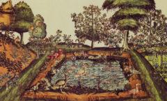 El huerto prehispánico de los mejores...