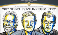 Nobel de Química premia observación de moléculas en 3D