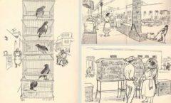 La calle de los pajareros Dibujos de Alberto Beltrán