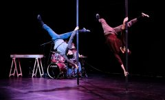 Circo, performance y danza