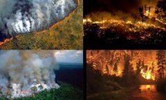 Arde La Amazonia, Alaska, Greonlandia, Siberia etc.