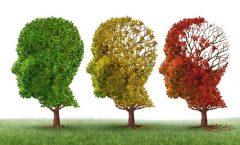 Jornada mundial del alzheimer; El Papa pide mas apoyo para abatir esta enfermedad