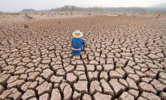 Sufrimiento humano por el cambio climático