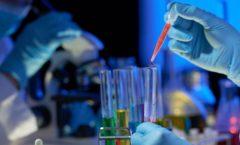 La carrera por la vacuna contra covid19