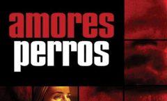 """""""Amores perros"""" a 20 años"""