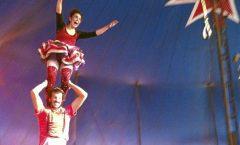 Circo, cirqueros y saltimbanquis