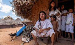 Alta la letalidad en indígenas: Salud Pública de la UNAM
