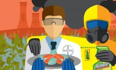 Privatización de los alimentos y la salud