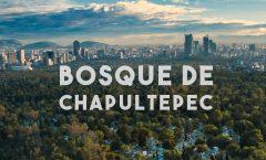 Arte público el Bosque de Chapultepec obra de arte: Gabriel Orozco