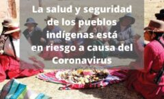 los pueblos indígenas están buscando sus propias soluciones a esta pandemia