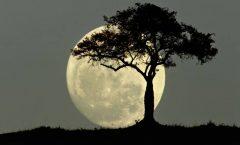 """""""De las lunas las de octubre son mas hermosas"""""""
