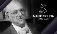 Mario Molina defendió hasta su muerte las energías verdes   El científico fue pionero en estudios de química atmosférica