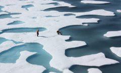 La banquisa de Artico desaparece en Verano