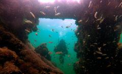 La incómoda historia del barco con esclavos mayas