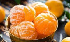 ¿Qué es la mandarina?