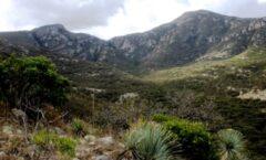 la Sierra de San Miguelito en S L P