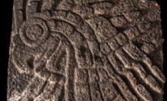Aguila real encontrado en el Templo Mayor