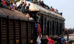 Alteridad y xenofobia: dos culturas