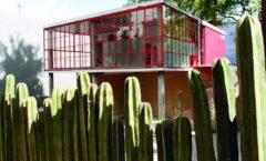 Rescatan casa orgánica de O´Gorman para la investigación artística