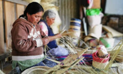 Artesanas de Oaxaca, entre olvidados en la pandemia