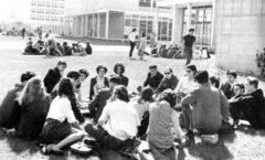 Hacia la transformación universitaria