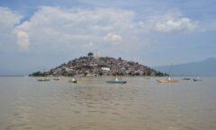 Advierten pérdida de 35% de humedales en Lago de Pátzcuaro