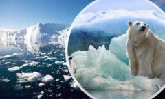 El deshielo es fundamental en la evolución de las eras glaciales