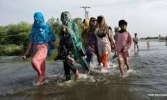 Mujeres y niñas son 14 veces más probables de morir en un desastre