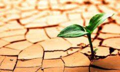 Un sistema resiliente es cuando recupera su estado inicial