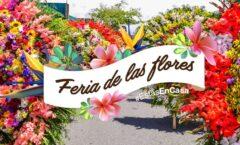 """""""Ensueño de hilo de diez lenguas"""" en la feria de Las Flores en San Angel"""